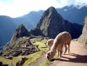 Ekvador-Peru_15_Machu_Picchu
