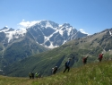 elbrus trek 8