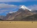 kailash-himalayas-field