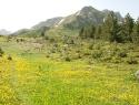 priroda_oko-caustice-i-ezerskog-vrva
