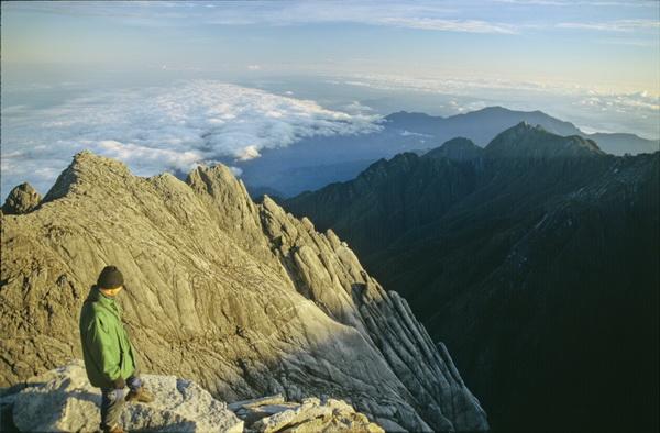 Borneo top