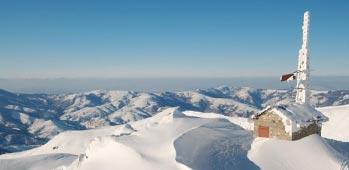 šar planina brezovica
