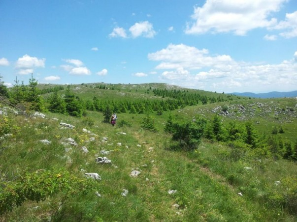 Beljanica hiking