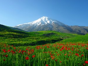 featured-damavand-galerija