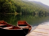 Montenegro - On Highland footsteps - biogradska_gora