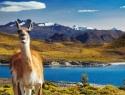 Patagonija_trek_3