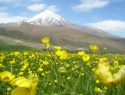 damavand panorama