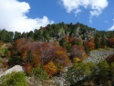 durlov-potok-na-jesen