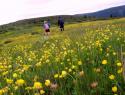 Homolje-Mountains-1